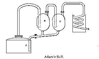 AdamsStill.jpg
