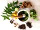 Zaprawki ziołowe
